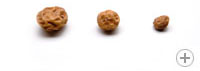 Different tigernut sizes: Mini, standard and large