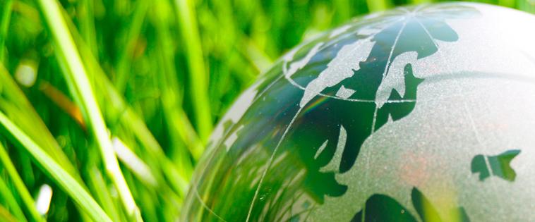La chufa ecológica, un superalimento que debes incluir en tu dieta diaria