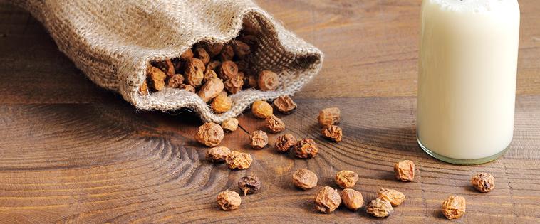 Las chufas: un alimento Non-GMO