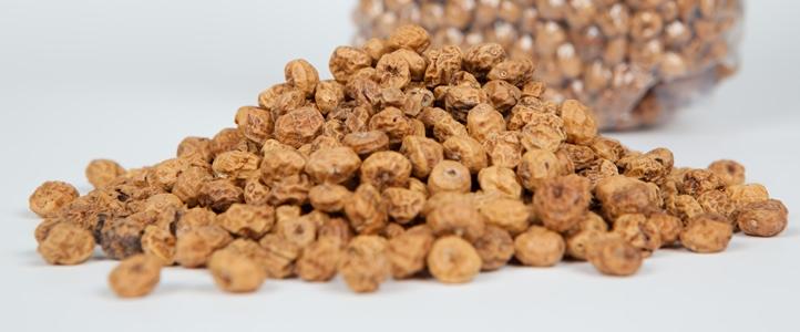 Image result for tiger nut